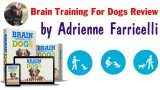 Brain Training for Dogs Review - Is It Legit or Scam?