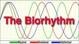 The BioRhythm Review - Amazing Way To Learn About Your Future